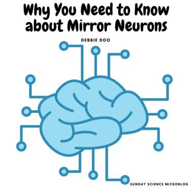 Why You Need To Know about Mirror Neurons